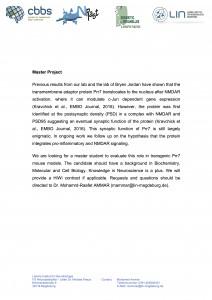 HIWI position_Dr. Mohamrd-Raafet AMMAR