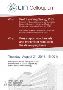 LIN Colloquium: Presynaptic ion channels and transmitter release in the developing brain @ LIN, Ebbing hall | Magdeburg | Sachsen-Anhalt | Germany