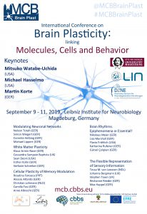 MCB Brain Plast Conference II: International conference on brain plasticity linking molecules, cells and behaviour @ Ebbinghaus Lecture Hall, Leibniz Institute for Neurobiology