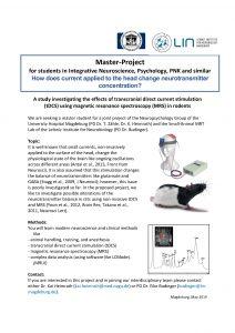stepstone master thesis