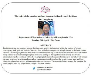 NEUROASSEMBLY Seminar: The roles of the caudate nucleus in reward-biased visual decisions @ Zoom